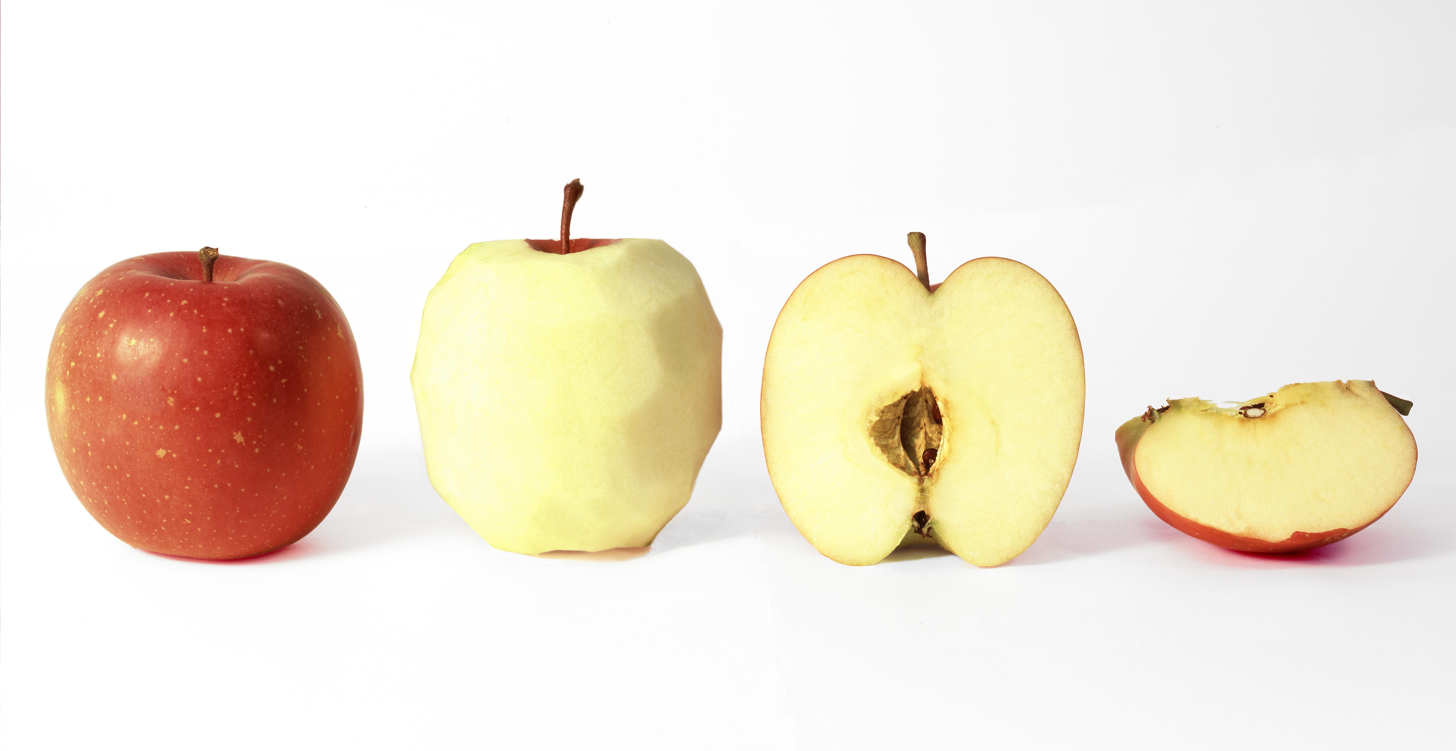 りんご、ringo、林檎